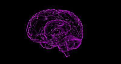 Diferencias entre demencia y Alzheimer