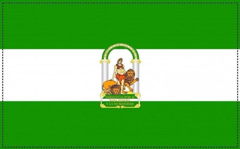 Andalucía Consejería para la Igualdad y Bienestar Social Ley de dependencia