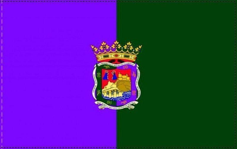 Málaga Delegación Provincial Igualdad y Bienestar Social Ley de dependencia