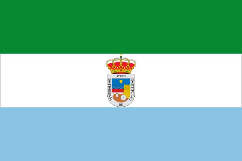 Torremolinos Ayuntamiento Ley de dependencia
