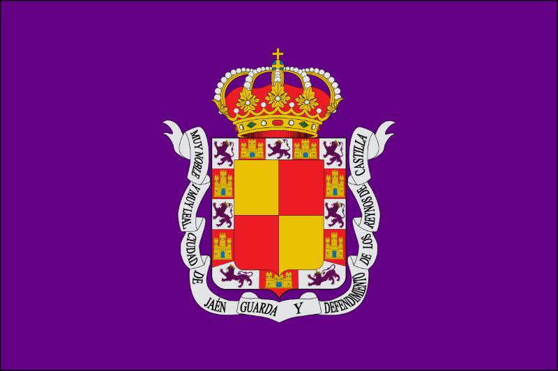 Jaén Ayuntamiento Ley de dependencia