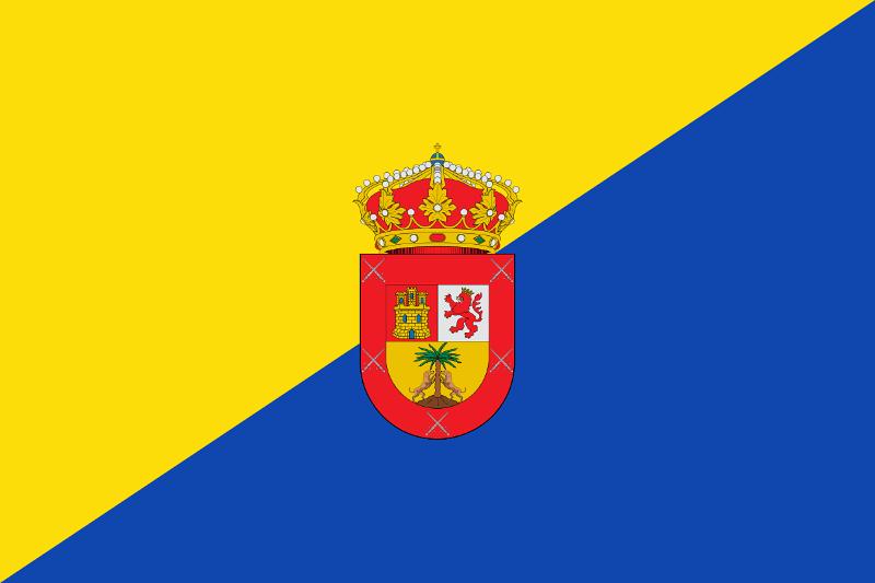Las Palmas de Gran Canaria Ayuntamiento Ley de dependencia