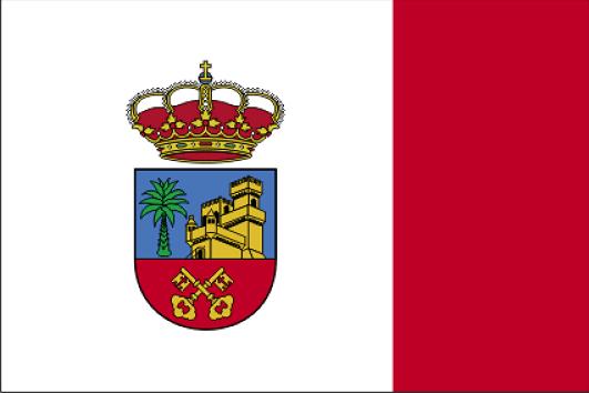 Don Benito Ayuntamiento Ley de dependencia