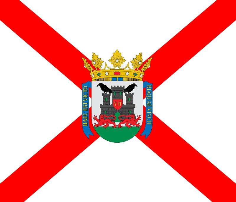 Vitoria-Gasteiz Ayuntamiento Ley de dependencia